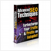 Advanced SEO Techniques Made Simple